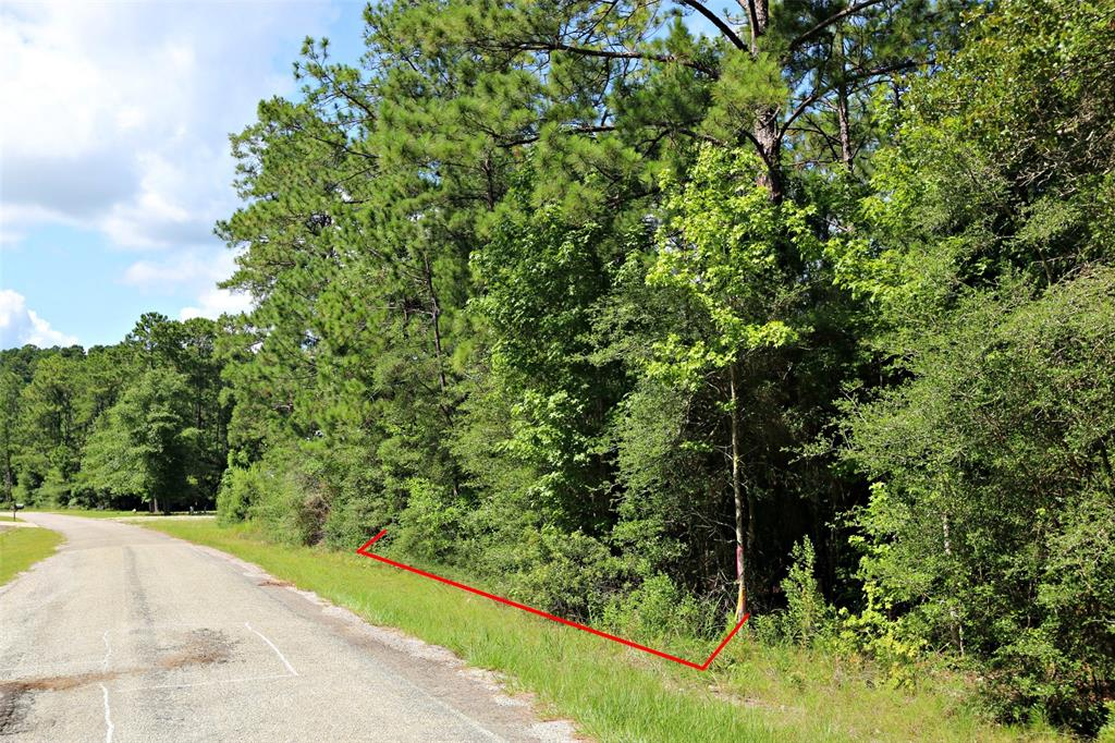 Lot 42 Pinehurst Drive, Brookeland, TX 75931 - Brookeland, TX real estate listing