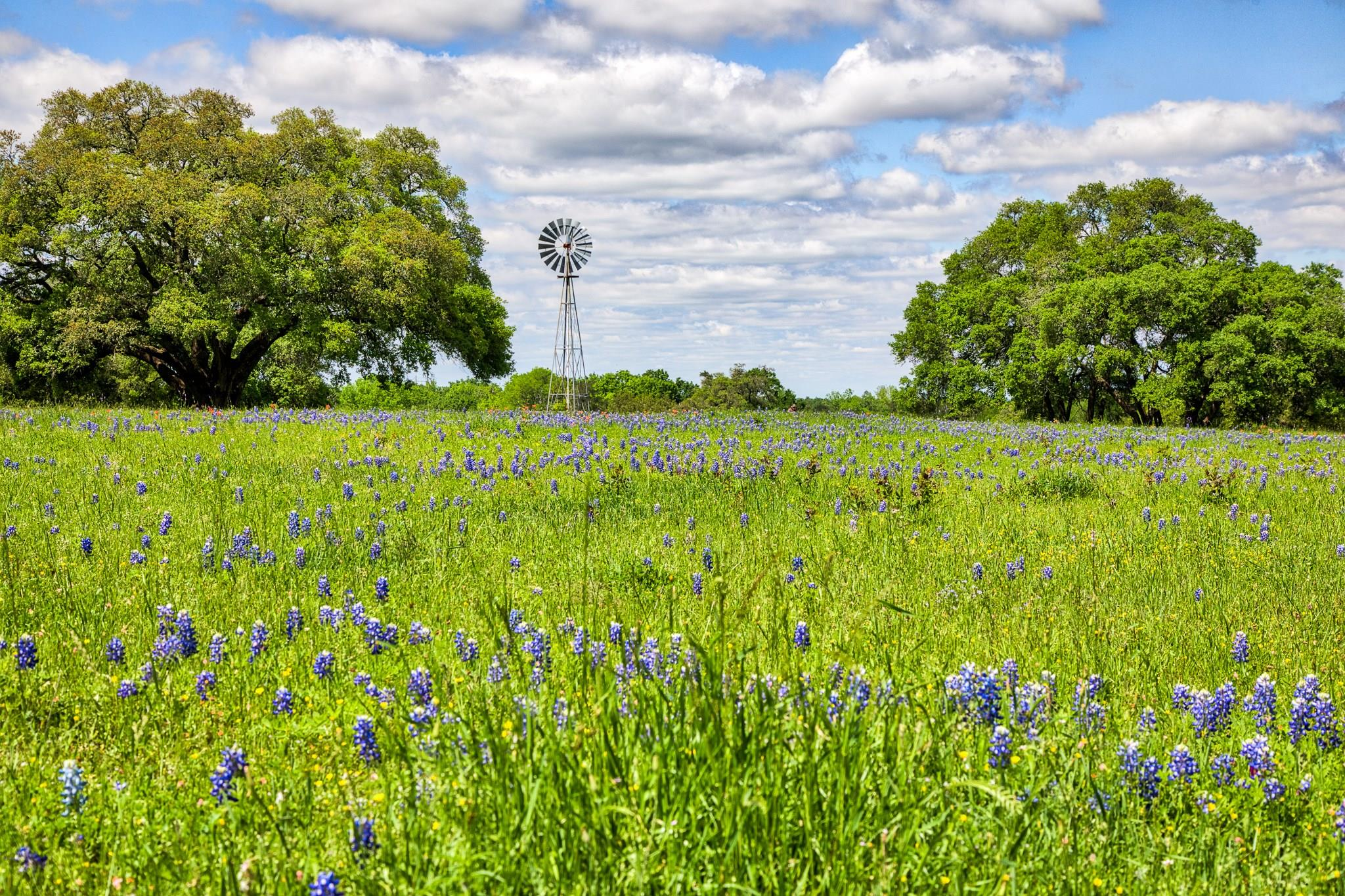 2200 Dannheim Road Property Photo - Brenham, TX real estate listing