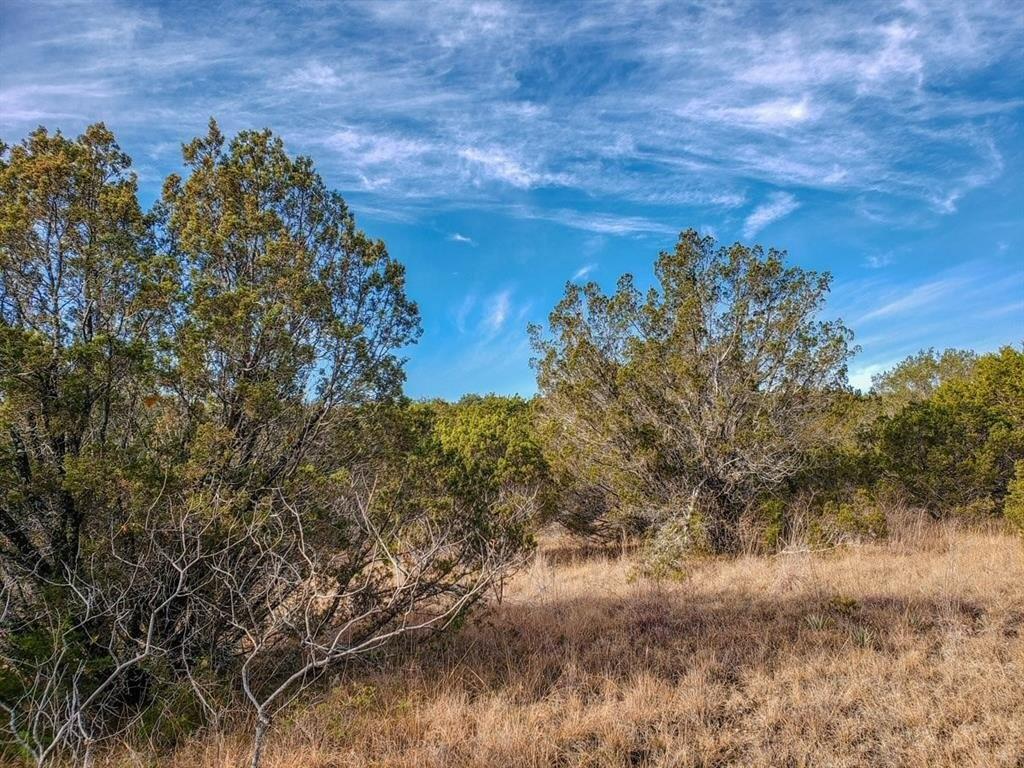 990 Bluegill Ridge Property Photo - Bluff Dale, TX real estate listing