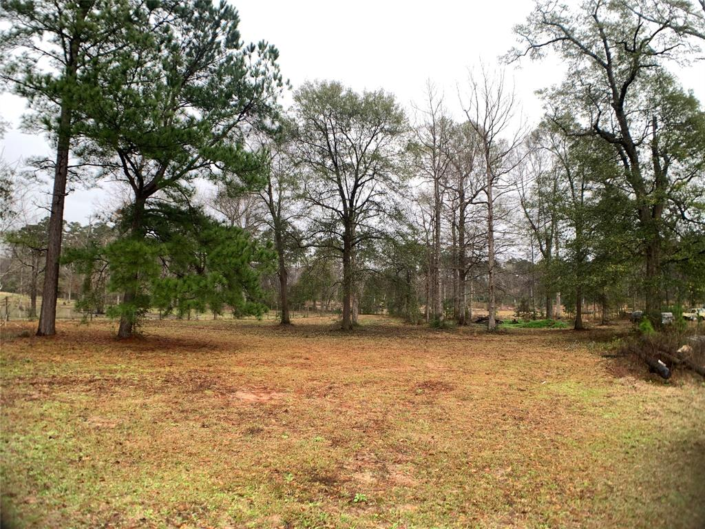 2108 County Road 3775 Property Photo - Colmesneil, TX real estate listing