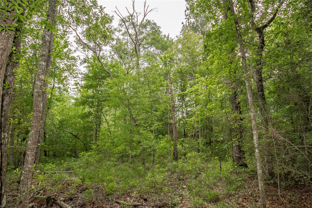 Tract B County Road 2184 Property Photo - Cleveland, TX real estate listing