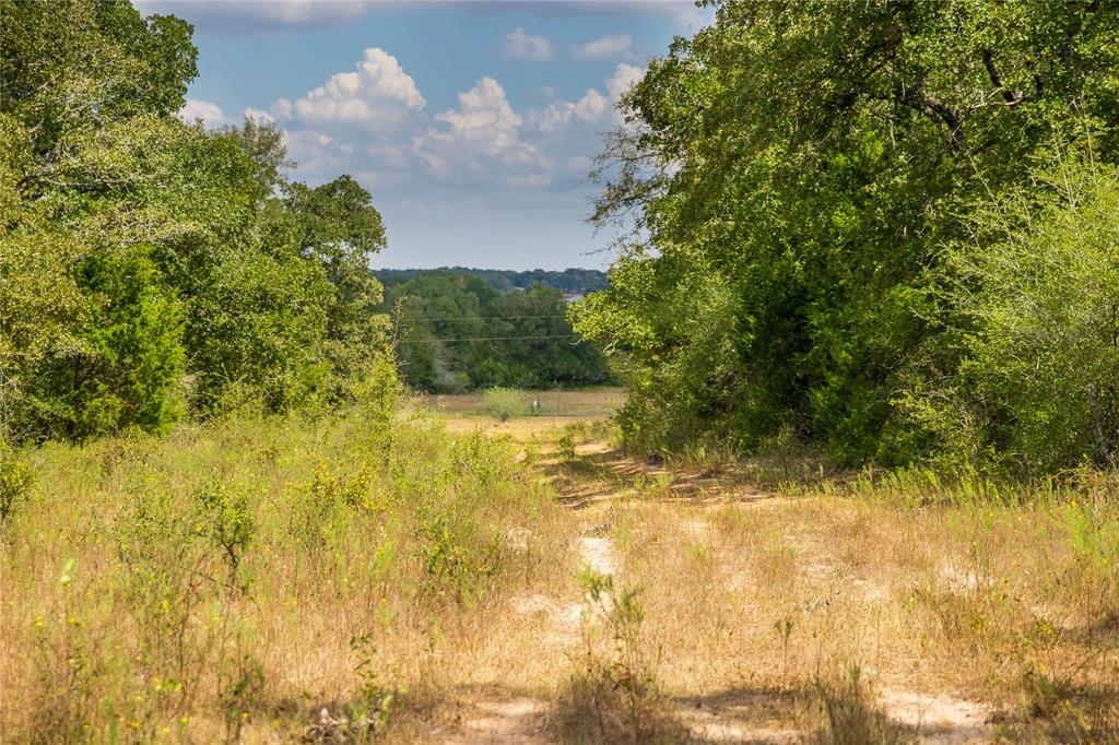 TBD (332.2 Acres) County Road 140, Caldwell, TX 77836 - Caldwell, TX real estate listing