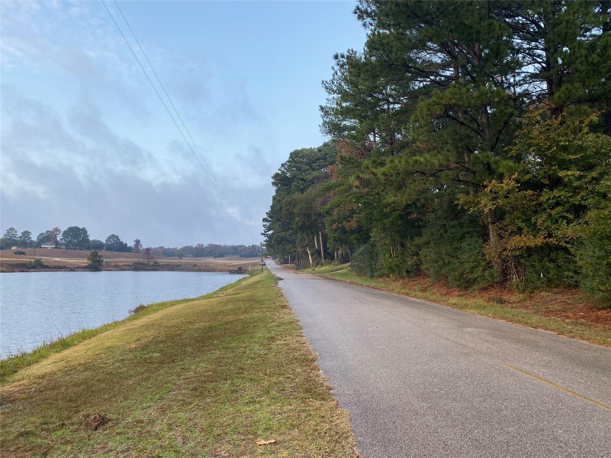 29 Lakeview Drive Property Photo - Hilltop Lakes, TX real estate listing