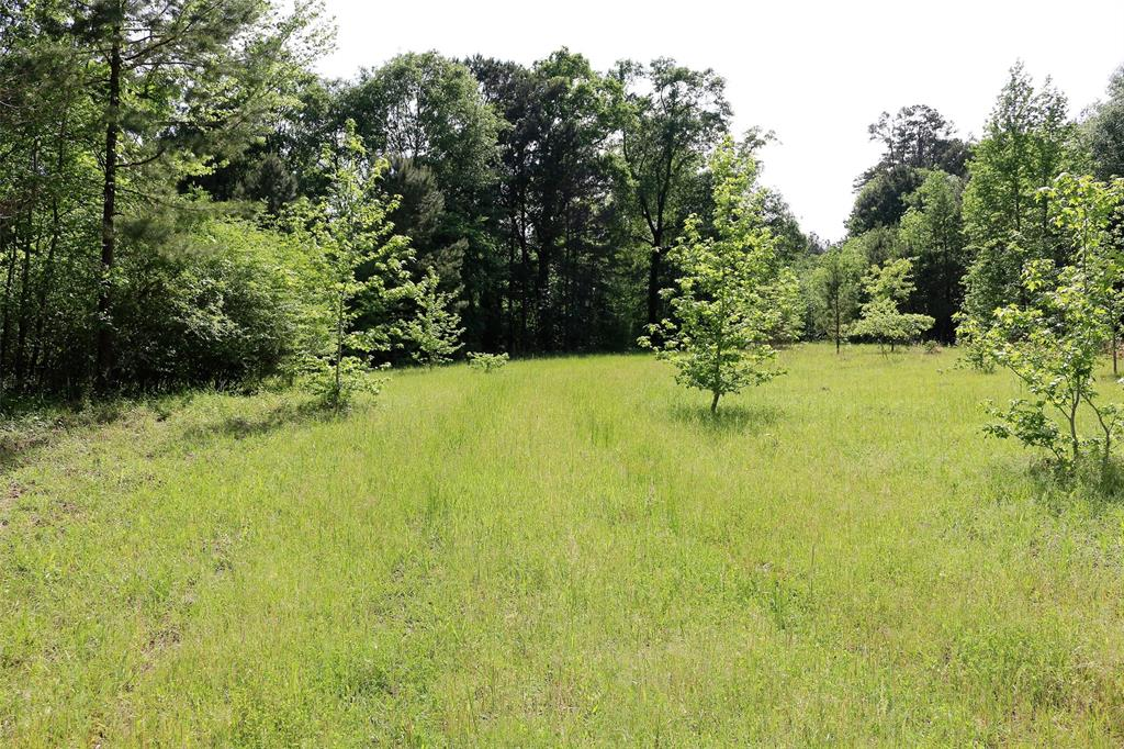 000 CR 1130 Property Photo - Kennard, TX real estate listing