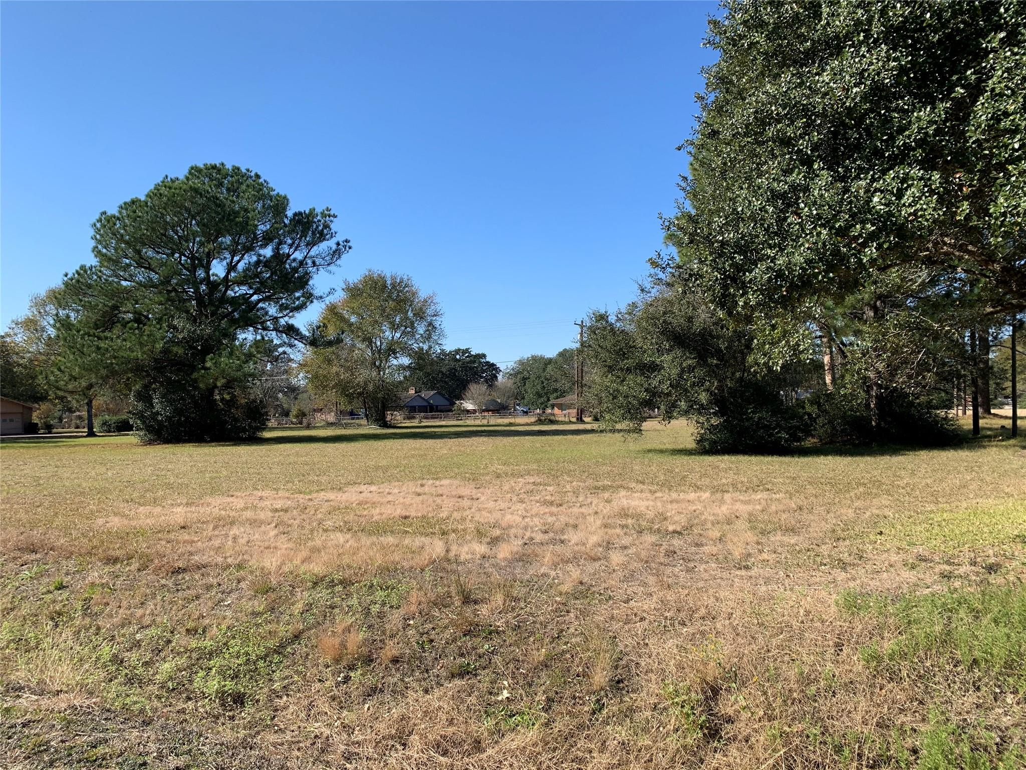 0 Alonzo Street Property Photo - Prairie View, TX real estate listing