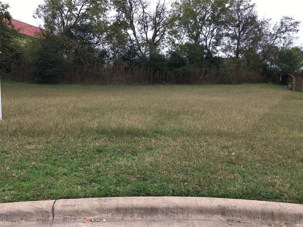 2807 Weeping Willow Circle, Brenham, TX 77833 - Brenham, TX real estate listing