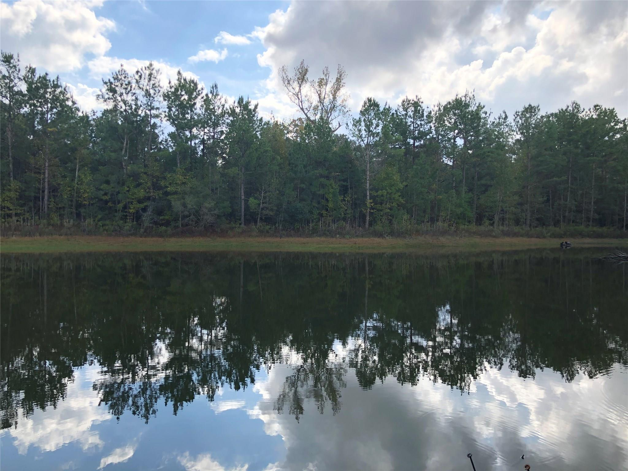 14623 Tree Farm Road Property Photo - Magnolia, TX real estate listing