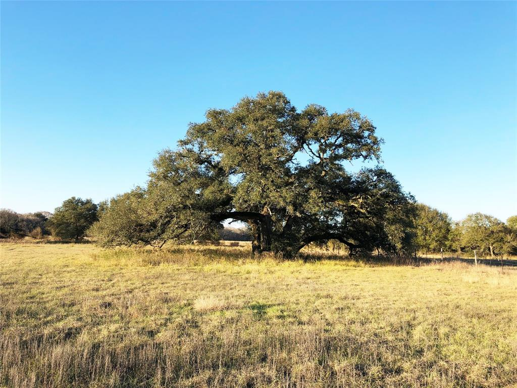 11476 County Road 365 Property Photo - Louise, TX real estate listing