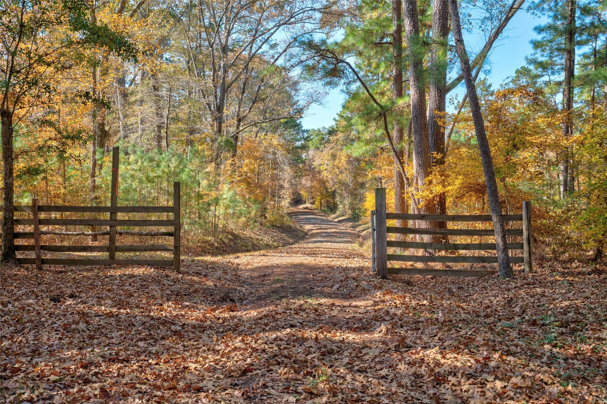 337 County Road 354 Property Photo - Broaddus, TX real estate listing