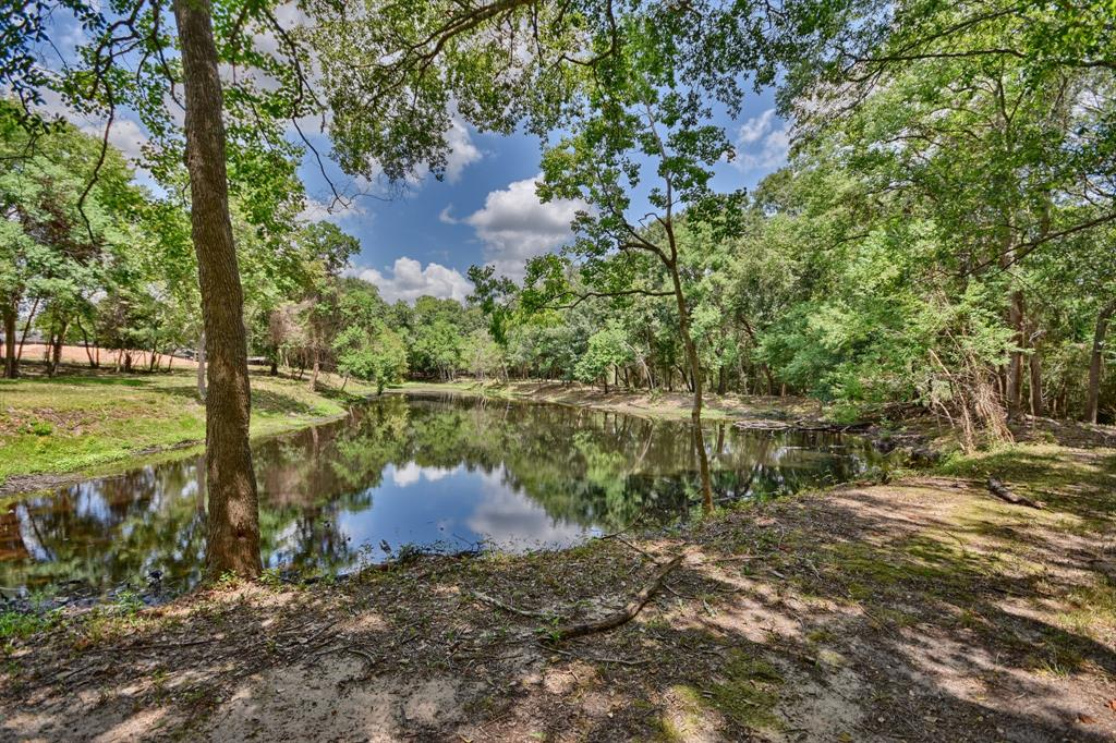 143 Wild Phlox, Bellville, TX 77418 - Bellville, TX real estate listing