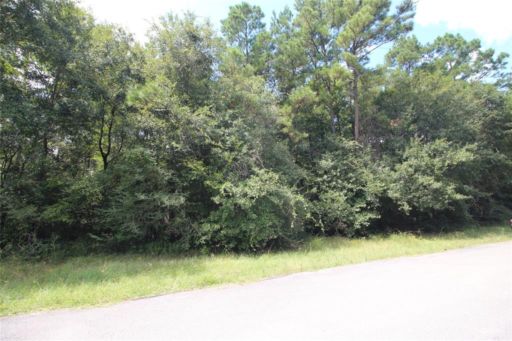 0 Carisbrook Lane, Humble, TX 77338 - Humble, TX real estate listing