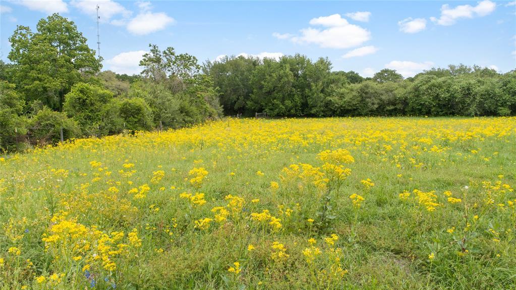 24031 Richards Road Property Photo - Prairie View, TX real estate listing