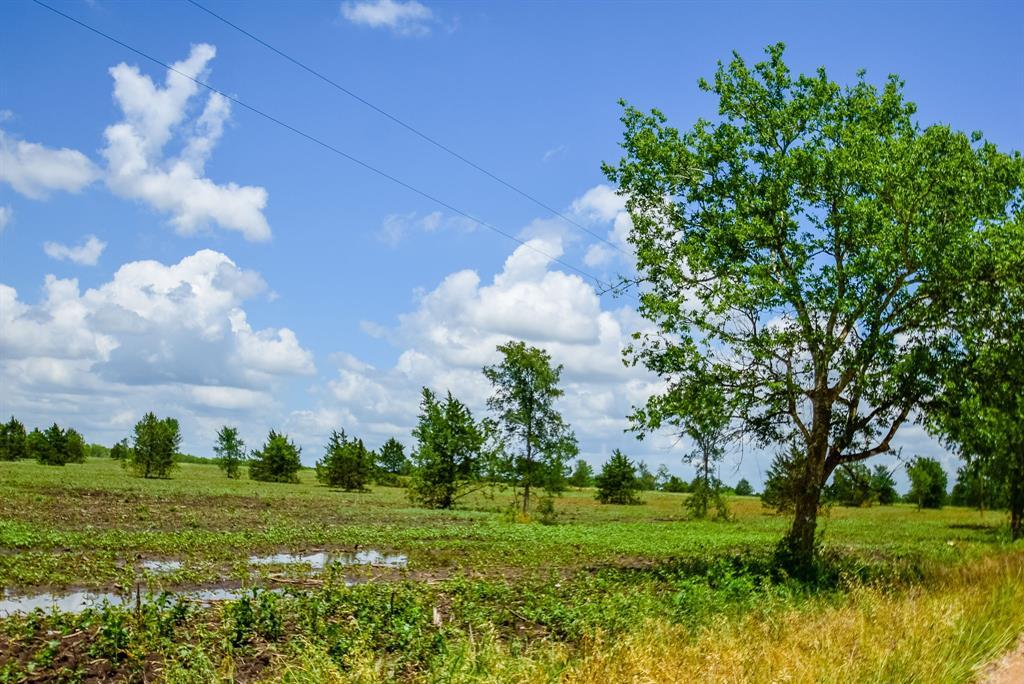 005 County Road 451 Property Photo - Waelder, TX real estate listing
