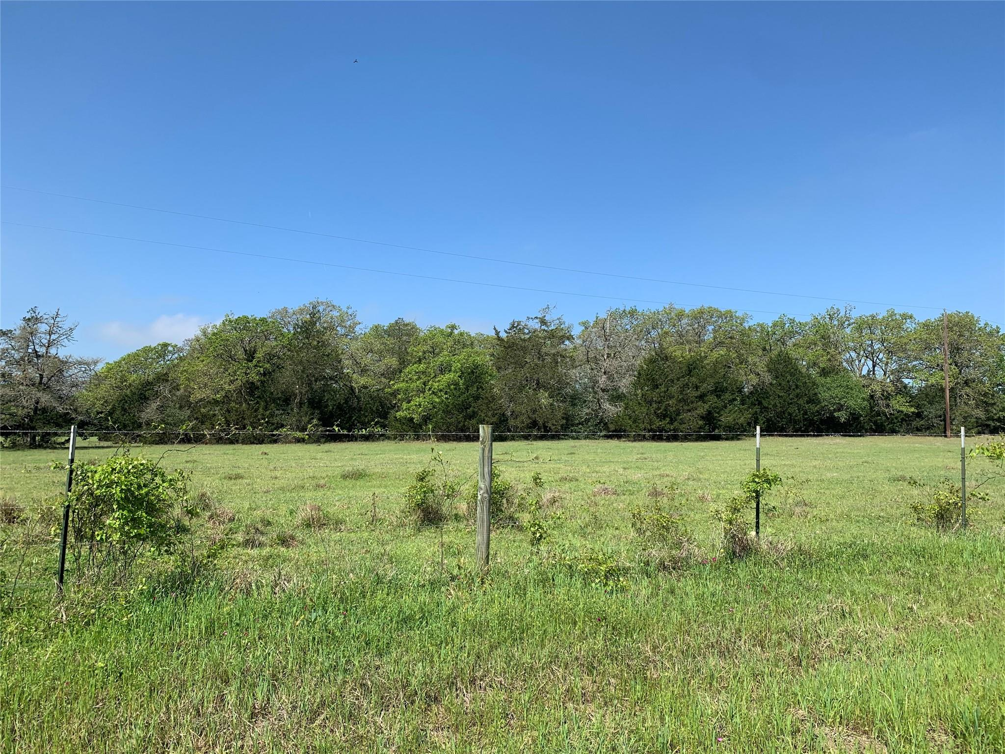 5301 Tract 2 Goehring Road Property Photo - Ledbetter, TX real estate listing
