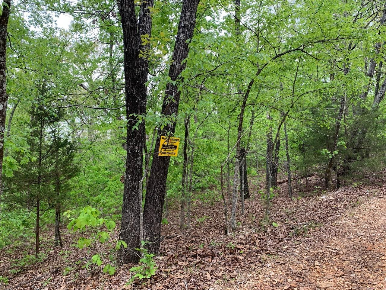 100 Old CCC Road Property Photo - Other, AR real estate listing