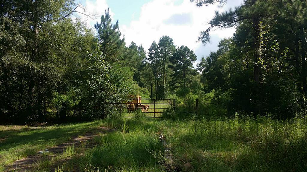 Tbd Lot3 Firetower Property Photo