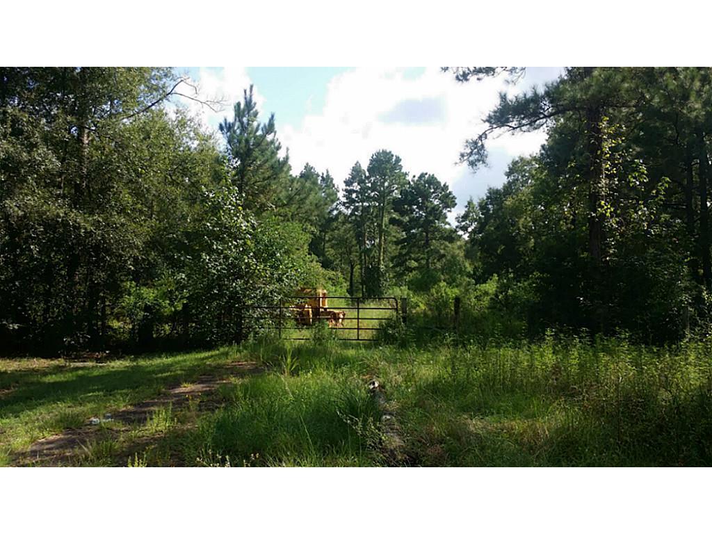 TBD Lot3 Firetower Property Photo - Conroe, TX real estate listing