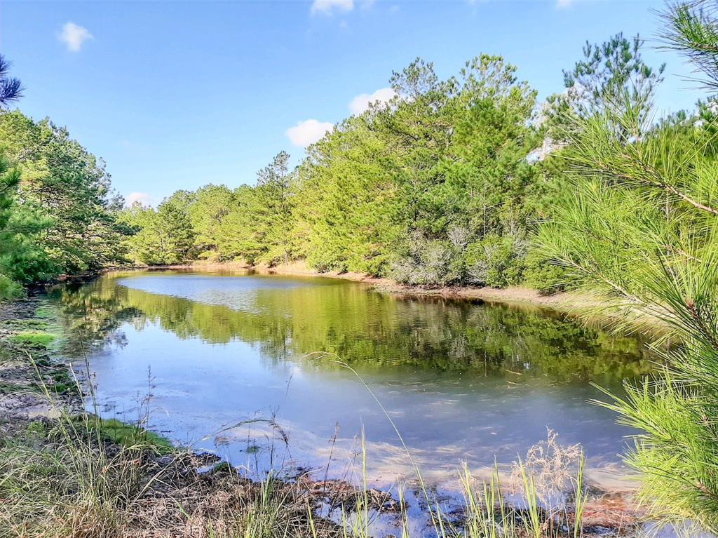 0 Bo Brown Road, Trinity, TX 75862 - Trinity, TX real estate listing