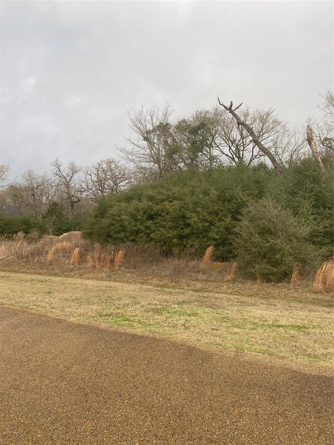 0000 Hampton Court Property Photo - Iola, TX real estate listing