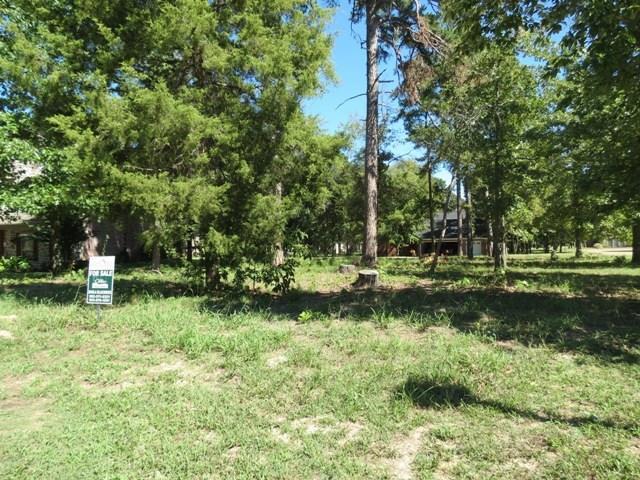 137 Eagles Bluff Boulevard Property Photo - Bullard, TX real estate listing