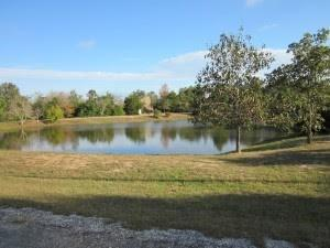 Lot 306 Callie Drive, Hempstead, TX 77445 - Hempstead, TX real estate listing