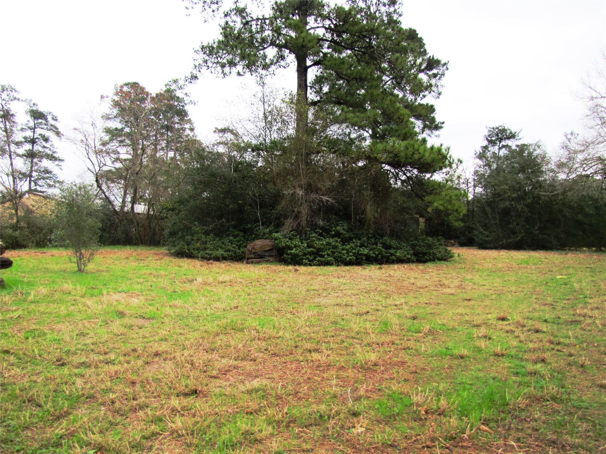 35502 Fm 149 Road Property Photo