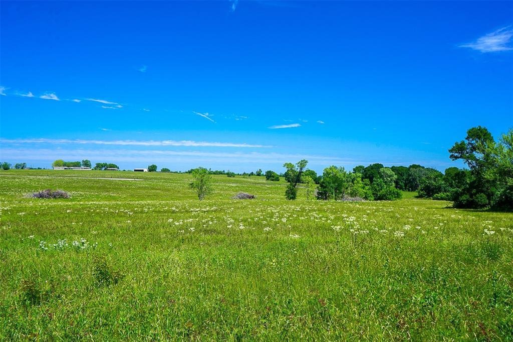 8 Anderson Ridge Lane, Anderson, TX 77830 - Anderson, TX real estate listing