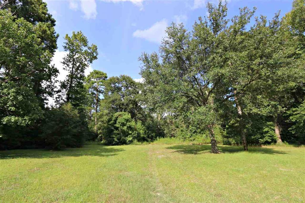 TBD HWY 87, Kirbyville, TX 75956 - Kirbyville, TX real estate listing