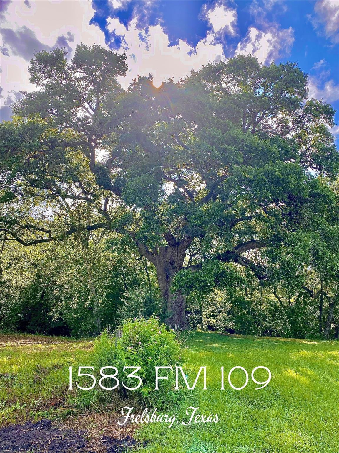 1583 Fm 109 Property Photo 1
