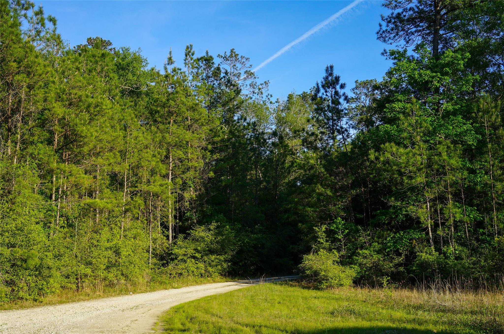 0 Black Creek Rd Property Photo - Saratoga, TX real estate listing