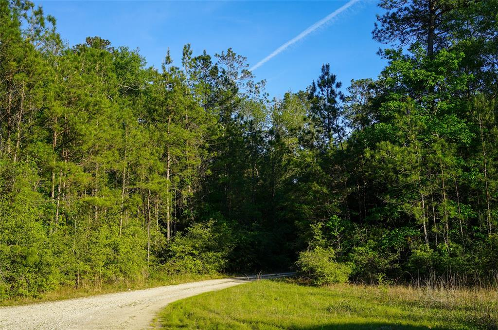 0 Black Creek Rd Property Photo - Saratoga, TX real estate listing