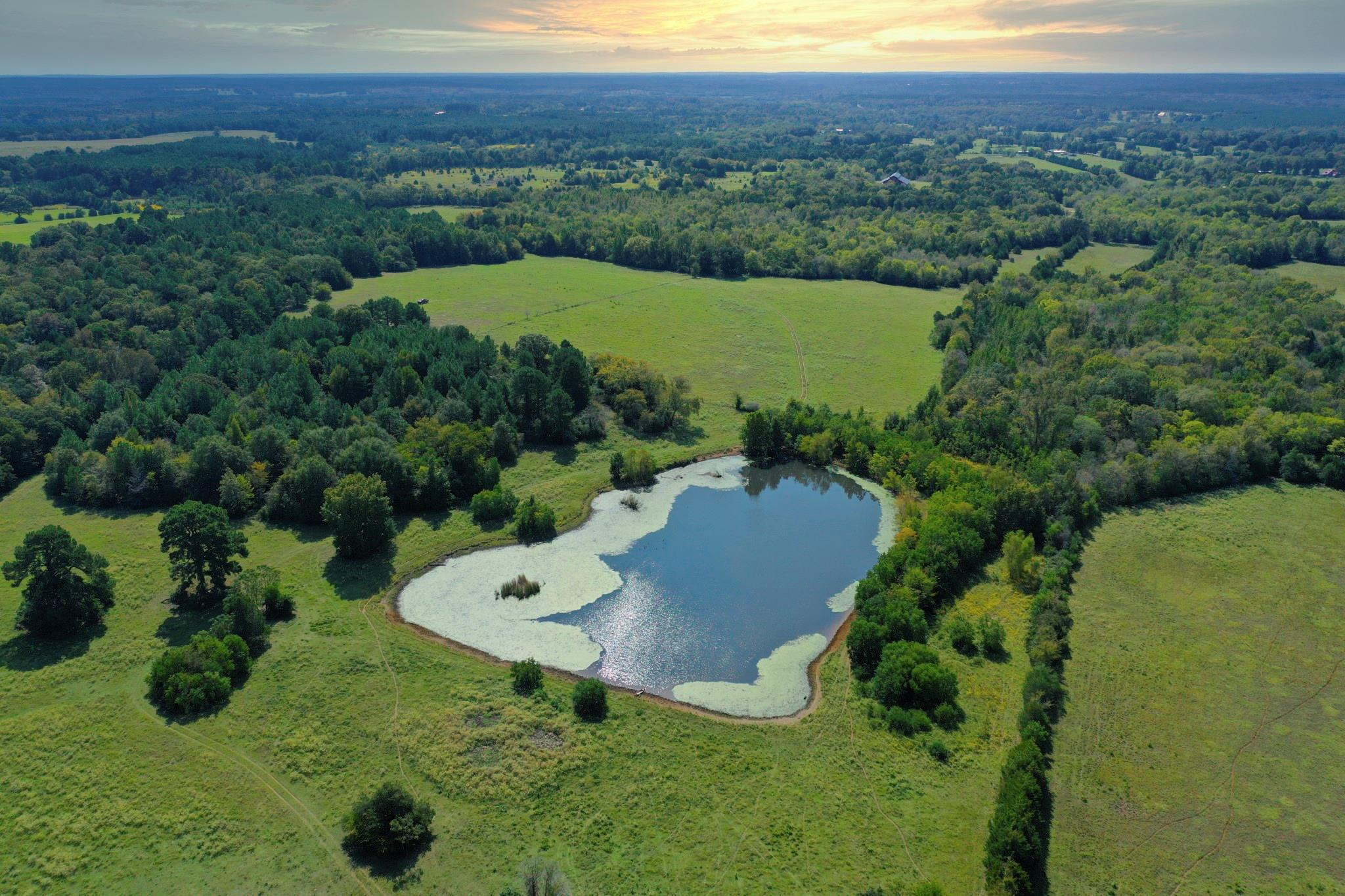 2927 County Road 1720 Property Photo - Grapeland, TX real estate listing
