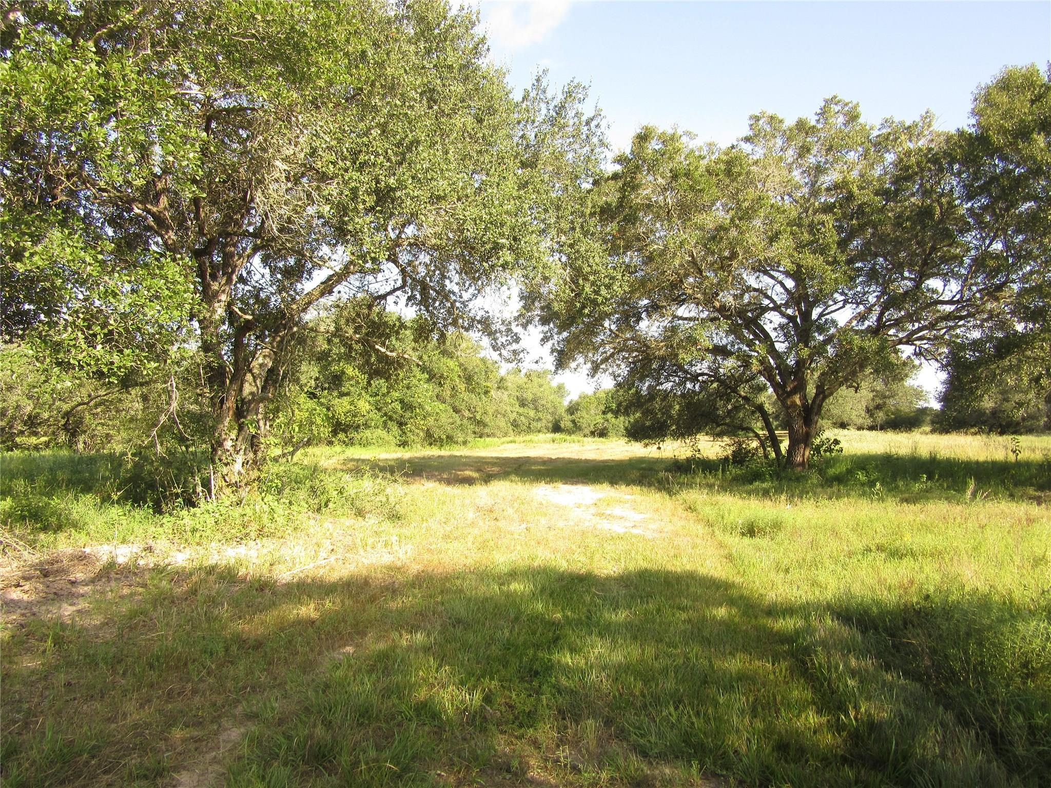 0000 CR 16 Property Photo - Altair, TX real estate listing