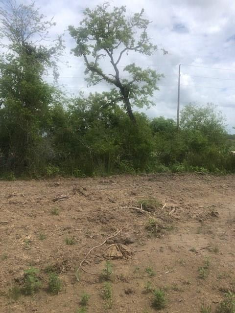 2594 County Road 117 Property Photo - Raywood, TX real estate listing