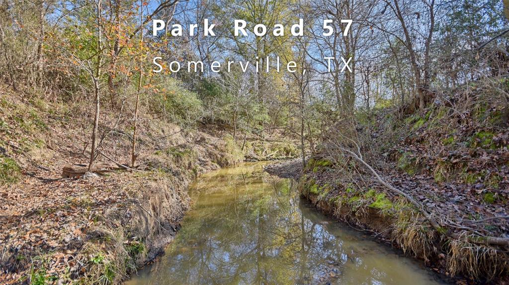 TBD (61.4 Acres) Park Road 57 Property Photo - Somerville, TX real estate listing