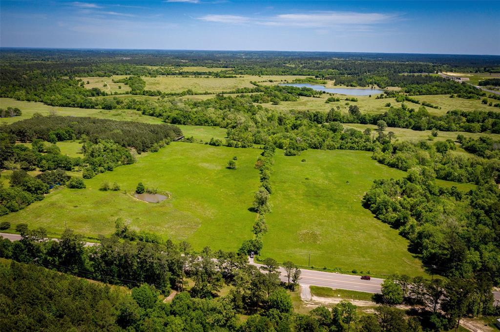 49 Acres FM 247 Property Photo - Huntsville, TX real estate listing