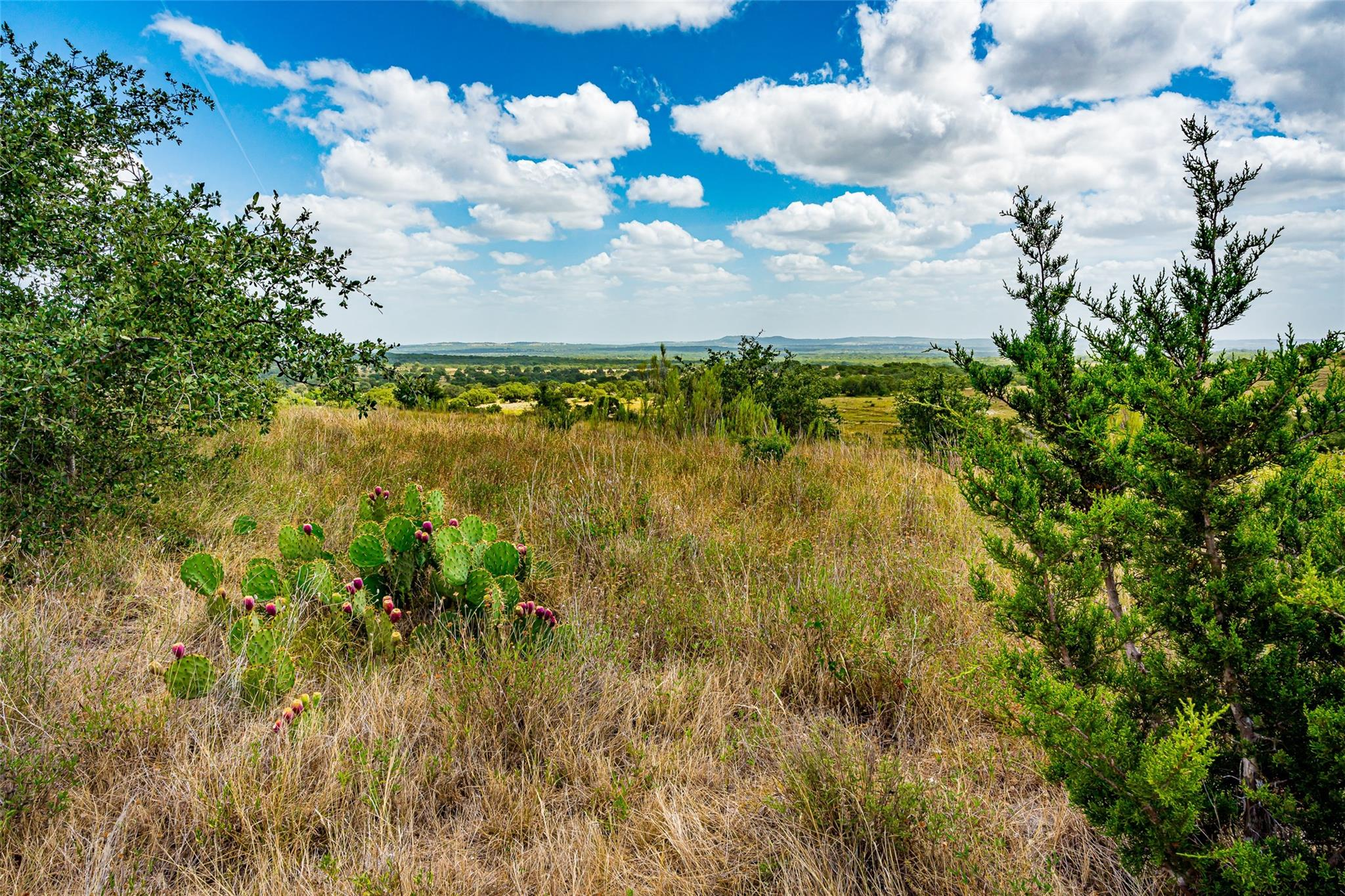 Lot 60 Summit Ledge Drive Property Photo - Johnson City, TX real estate listing
