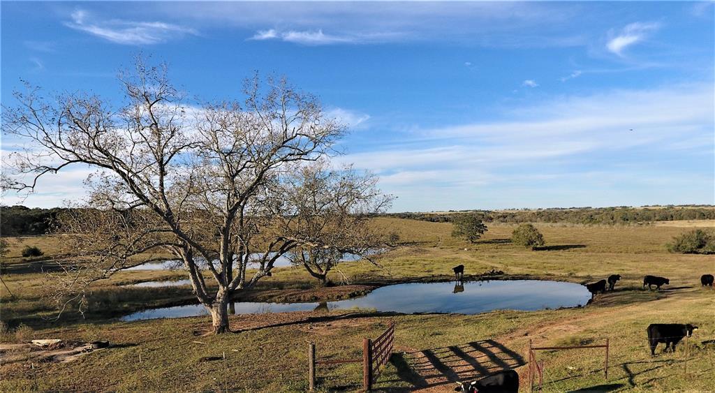 4516 Otto Lane Property Photo - Flatonia, TX real estate listing