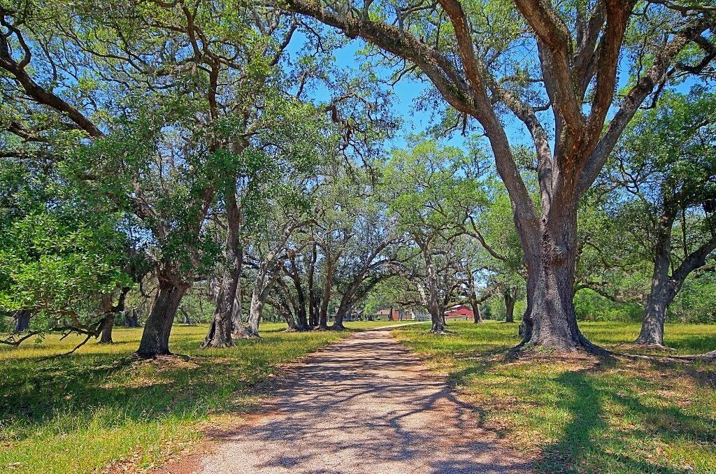 501 Brit Bailey Boulevard Property Photo - Angleton, TX real estate listing