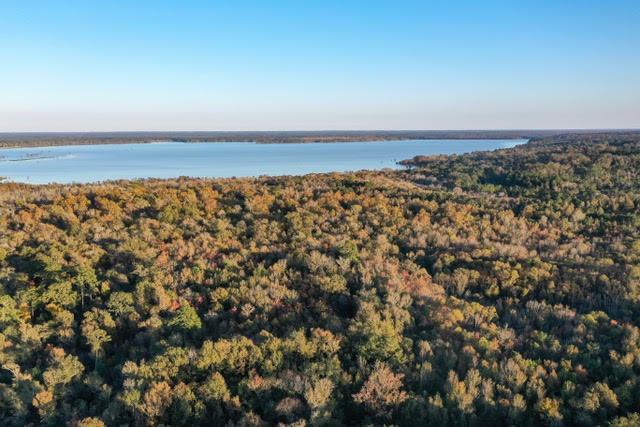 315 County Road 4115 Property Photo - Woodville, TX real estate listing