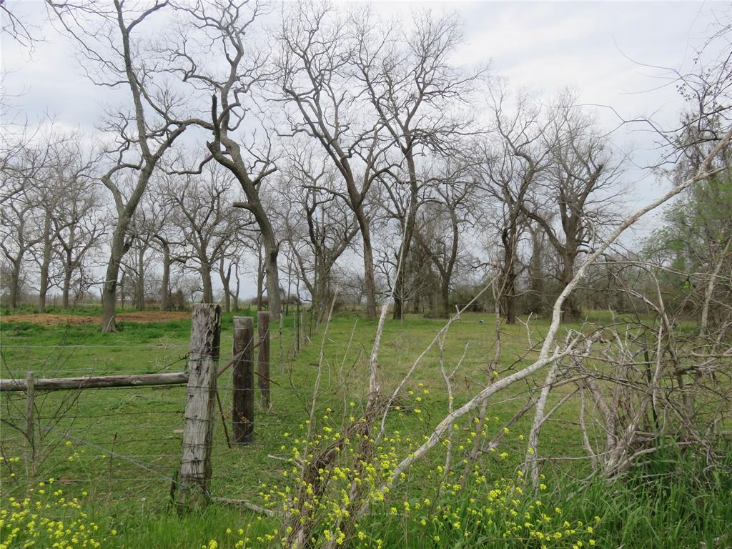0 County Rd 269 Road, Elm Grove, TX 77434 - Elm Grove, TX real estate listing