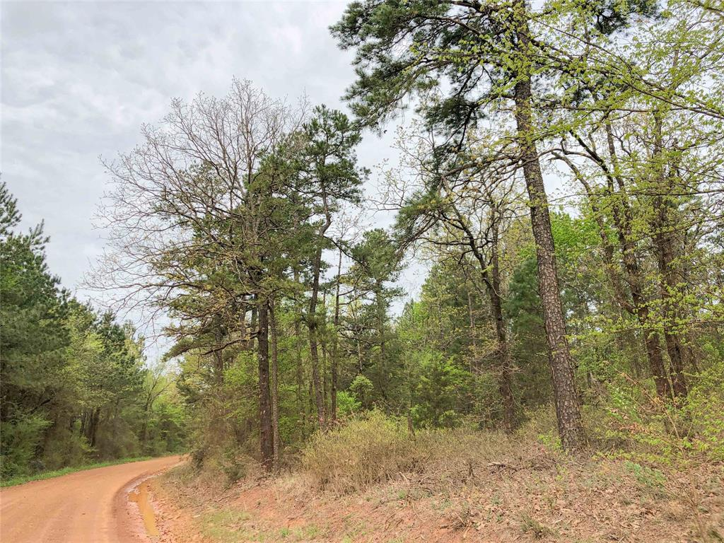 000 CR 2864 Property Photo - Hughes Springs, TX real estate listing