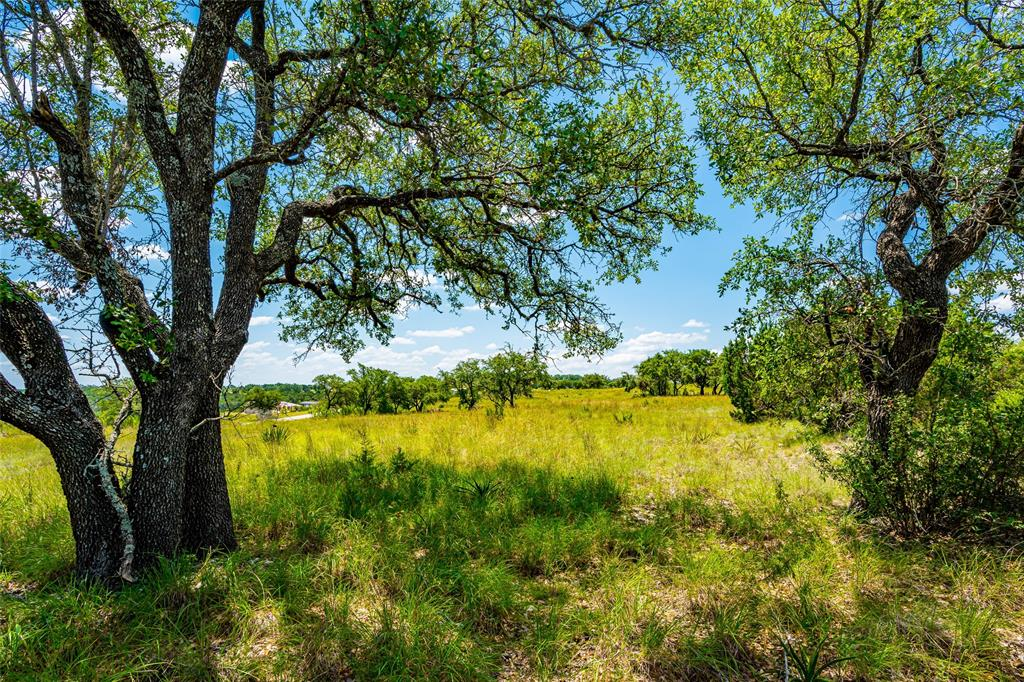 Lot 140 Cedar Mountain Drive Property Photo - Spicewood, TX real estate listing
