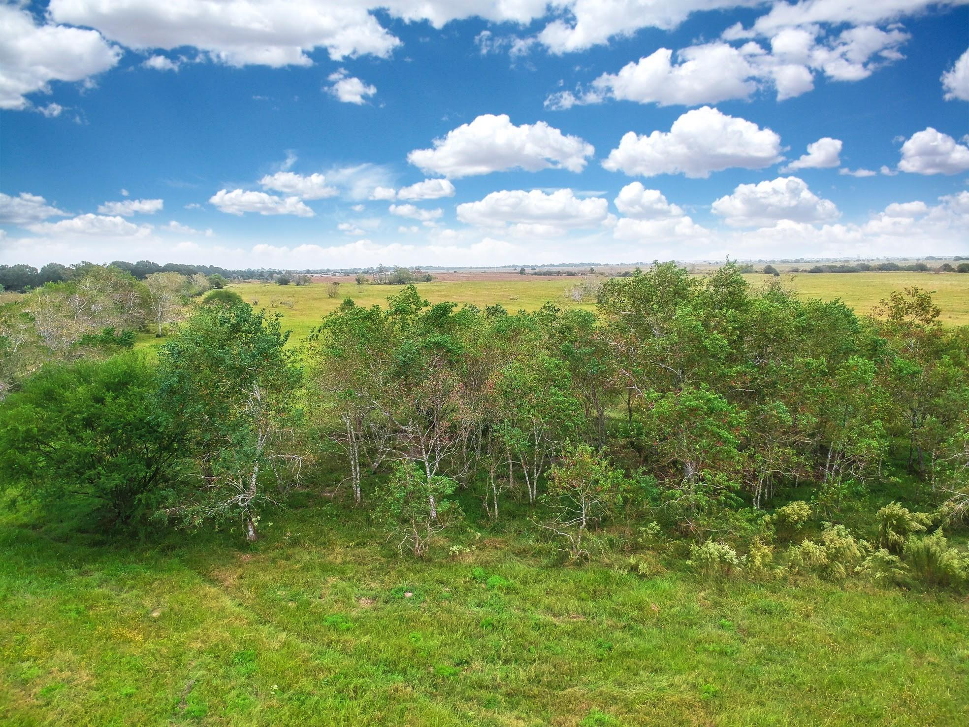 30.439 Ac (call 157 Tr 9) Sealy Rural Real Estate Listings Main Image