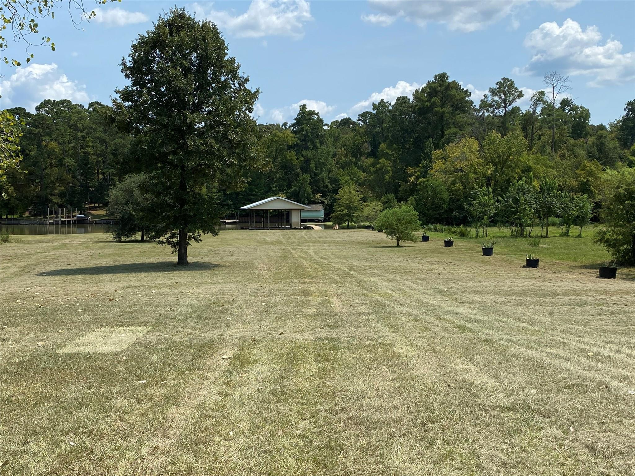 0 Lakeshore Lane Property Photo - Riverside, TX real estate listing