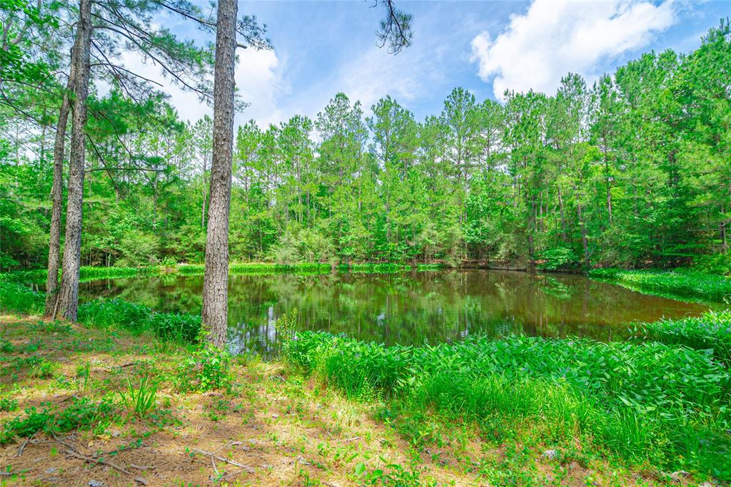 0 Timber Road 23 Property Photo - Chester, TX real estate listing
