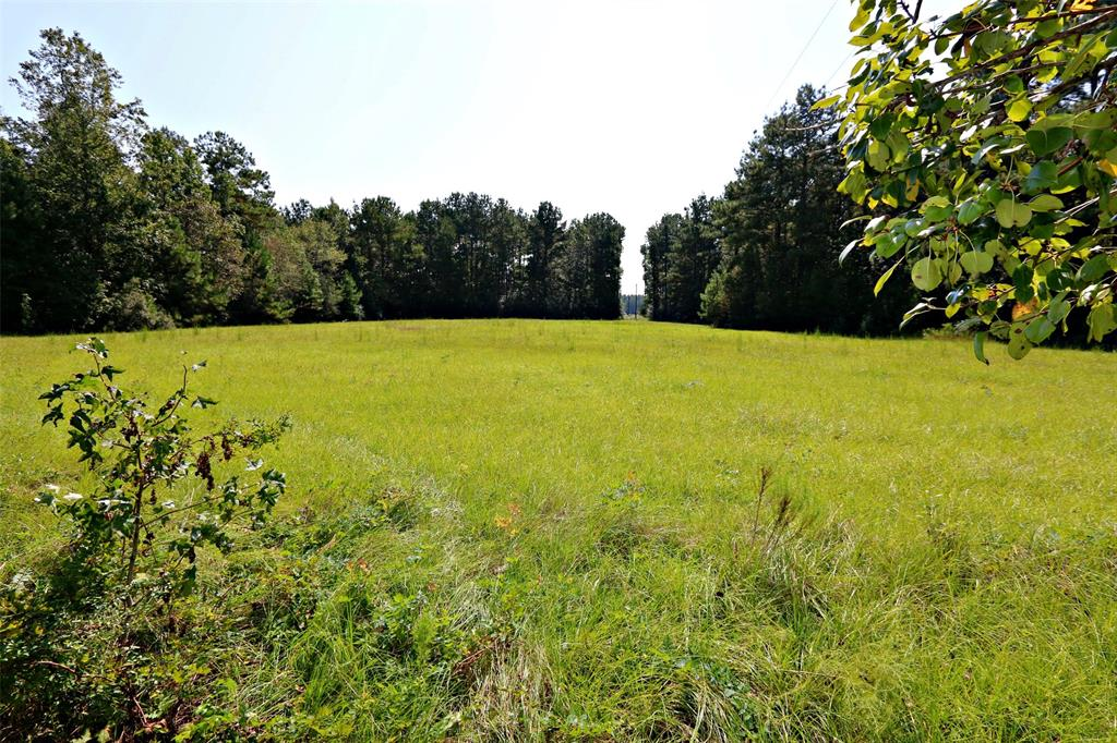 448 County Road 467, Kirbyville, TX 75951 - Kirbyville, TX real estate listing
