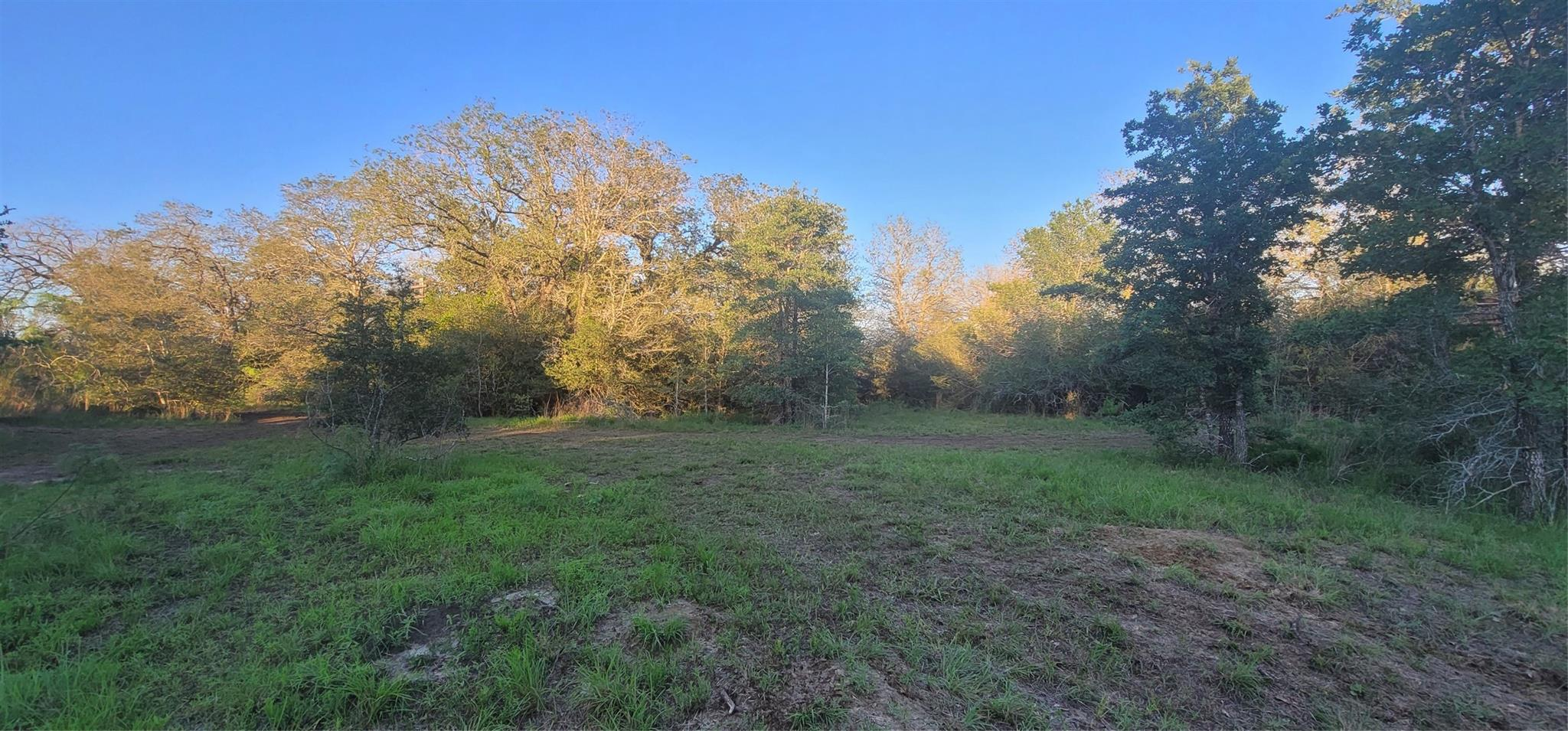 1721 Wood Haven Property Photo