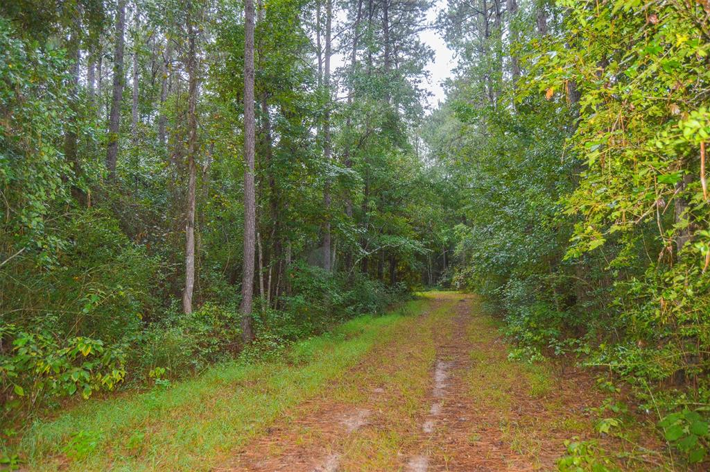 TBD County Road 2252, Cleveland, TX 77327 - Cleveland, TX real estate listing