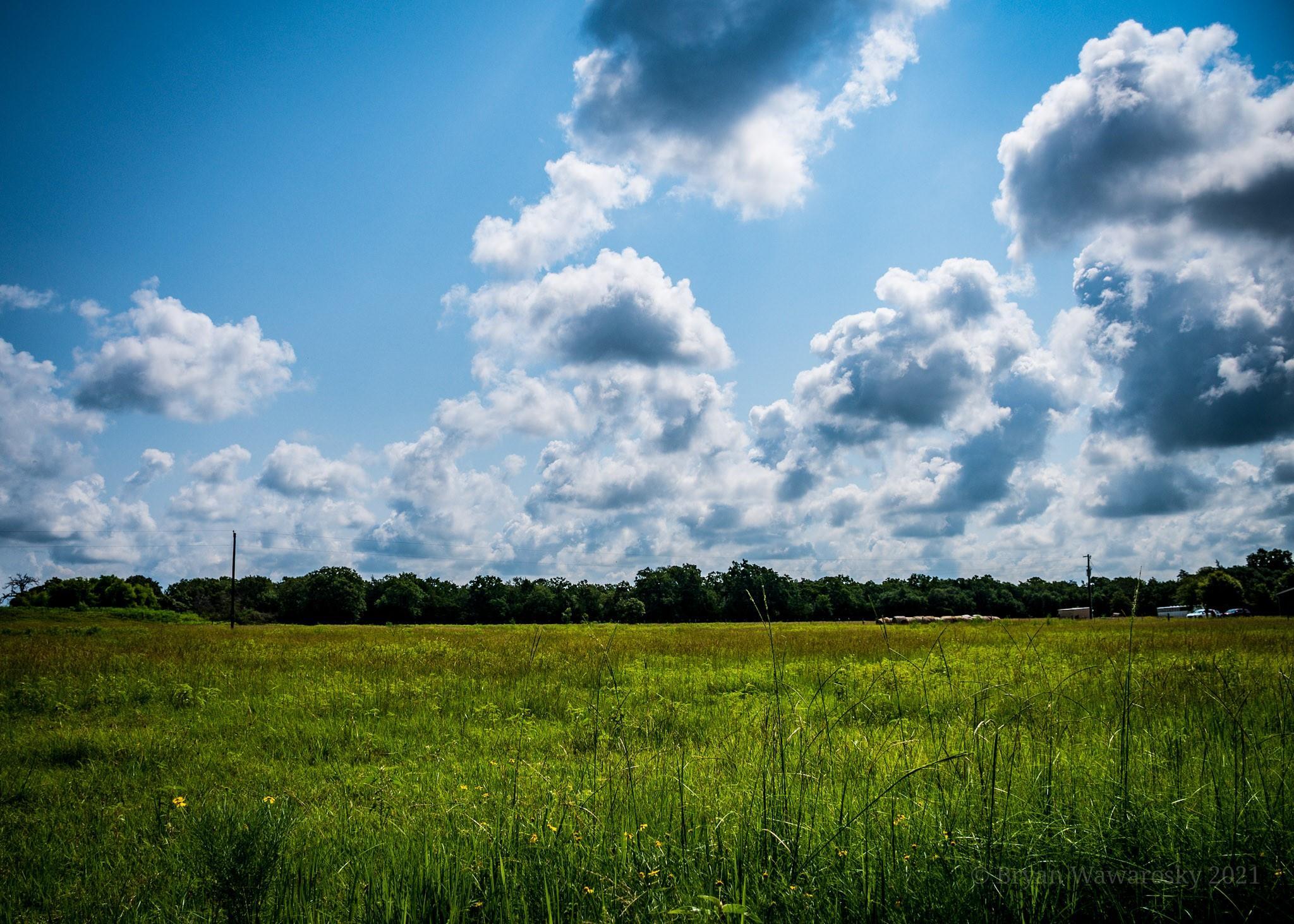 3000 Lomax Harmel Road Property Photo 1